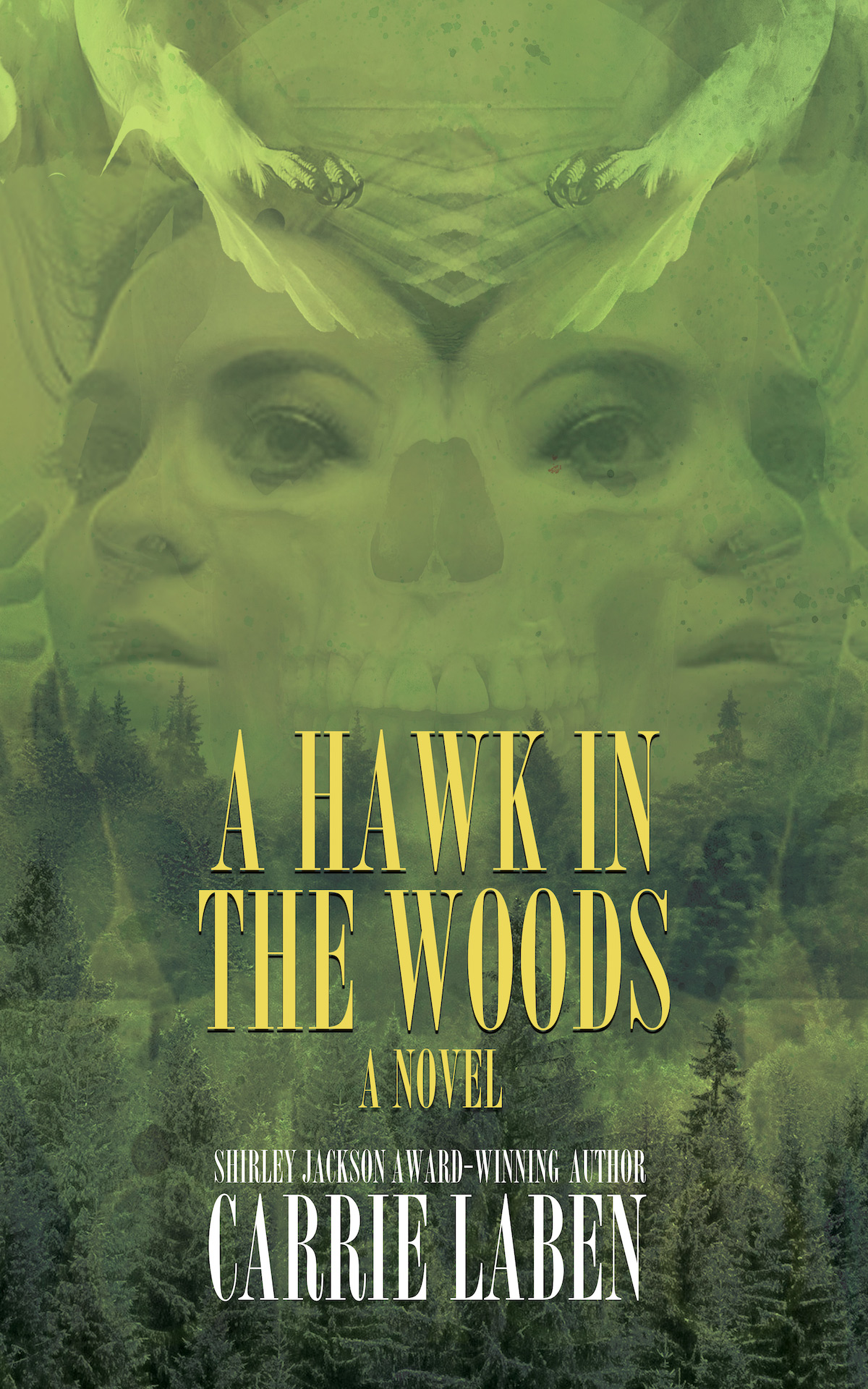 A Hawk in the Woods by Carrie Laben